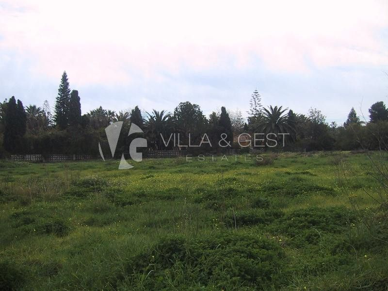 Great plots in Guadalmina Baja.